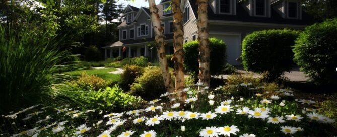 the landscape around your home can contribute to your home's energy output.